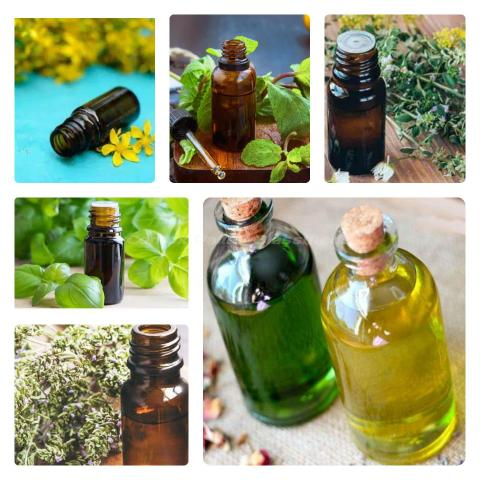 Infusion botanical oils